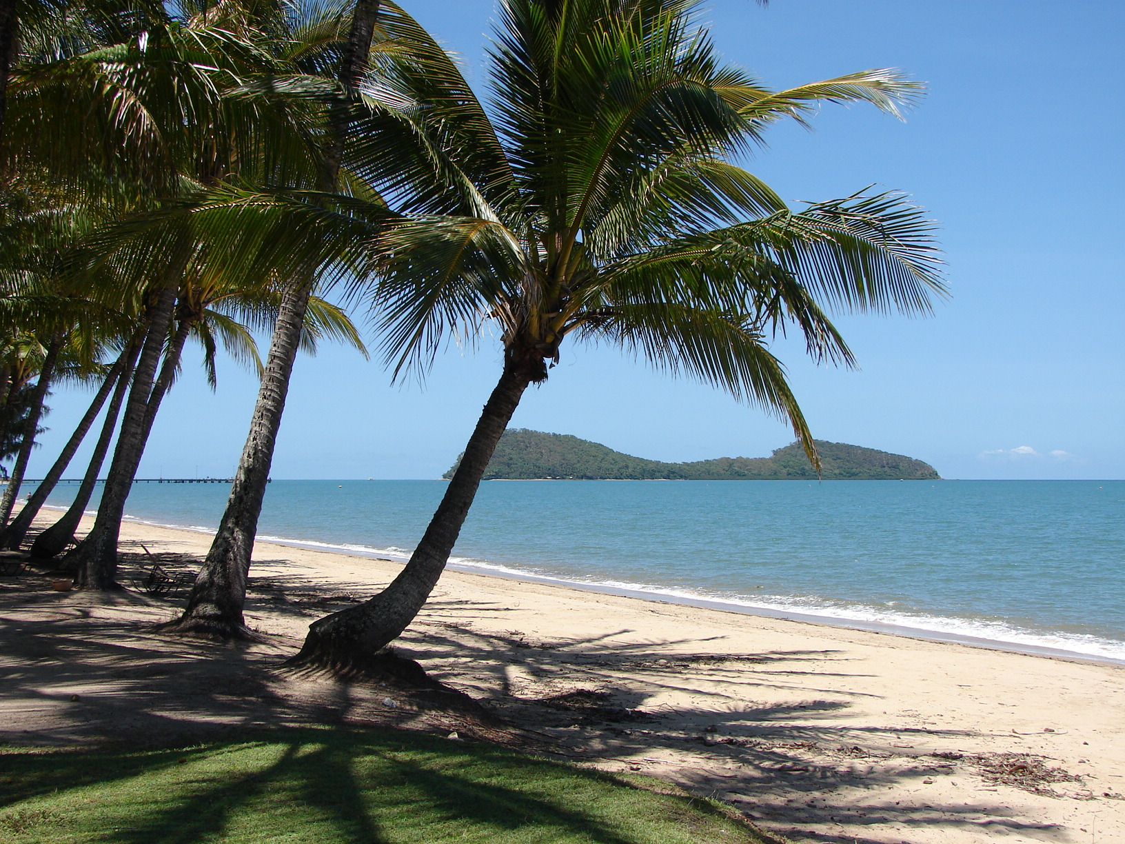 Cairns marriage celebrant cairns tropical marriages venues
